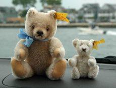 bears-canal-web-1024_tp